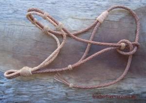 Leather Halter 026