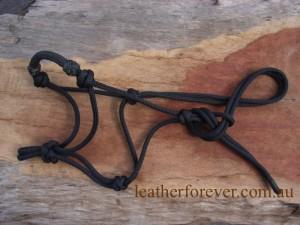 Rope Halter 002