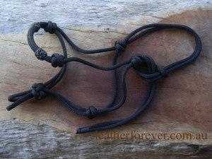 Rope Halter 014a