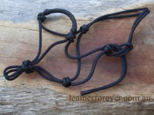 Rope Halter 019