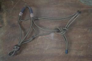 Rope Halter 1005